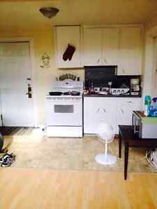 Nice one bedroom in town heat and lights included.