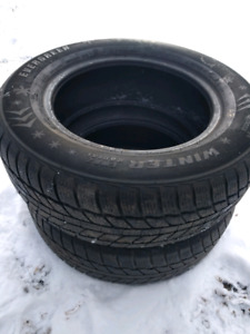 205/65/R15 EVERGREEN WINTER TIRES ONLY 2