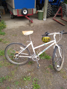 A Norco 10 speed girls bicycle in Enderby