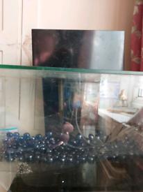 Fluval 26 litre fish tank