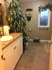 3 Rooms Availible in a Gorgeous Country Home Cornwall Ontario image 5