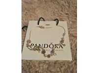 Pandora necklace with 10 Pandora charms and 20 sterling silver spacers