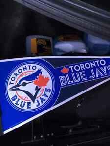 Beautiful Blue Jays Flag....