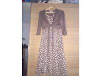 M&Co light brown pocka dot dress 👗