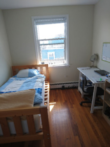 MAY 1st- 1 bdrm in a spacious 2 bdrm apt (South end)
