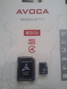 8gb micro SD and adapter