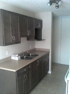 Offering free cable and internet for 1 year on 1 bedroom apt