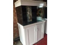Aqua one 300 white marine tropical fish tank with setup (delivery installation)