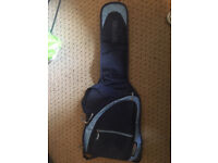 Padded Ritter electric guitar case