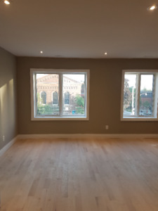 2 BEDROOM/2 BATHROOM BRAND NEW GORGEOUS  DT APT CENTRAL AC!
