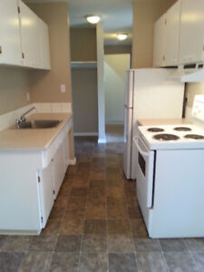 UPGRADED SUITE  SHERWOOD ARMS APARTMENTS