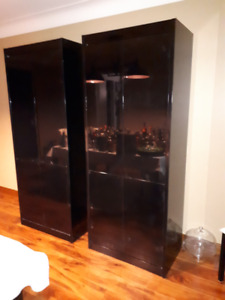 Tall Black  Cabinets + Server- Lighting and shelving incl.