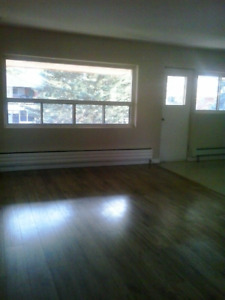 Lovely 3 Bedroom apartment with Balcony
