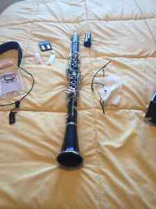 Signet Special Clarinet, Case, Cleaning equipment, Reeds Peterborough Peterborough Area image 7