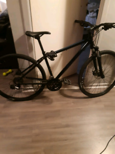 Rocky Mountain Bike Whistler 10