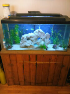 50 gallon fish tank $250. o.b.o