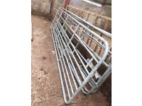Four normal field gates and two creep gstes sheep cows
