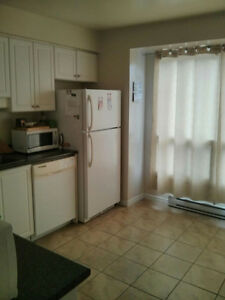 Roomate wanted, basement room London Ontario image 2