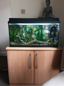 110 ltrs fish tank (3 ft) complete set up
