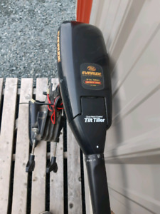 Evinrude electric troller