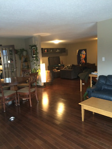 Main Floor for Rent on the sunnyside of Canmore