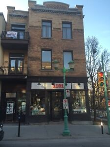 Mile End/ Outremont Large 5 bedroom Apartment