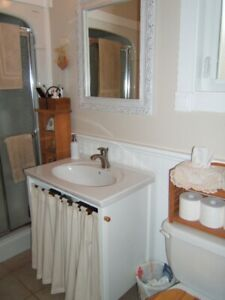 30 inch white bathroom vanity & sink with a country look
