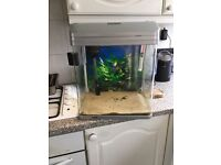 Fish tank with pump and heater