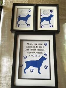 PET FRAMED ART AND ROCK ART