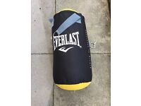 Everlast hanging punch bag and gloves.