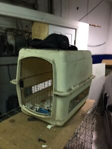 Dog crate. Do carrier
