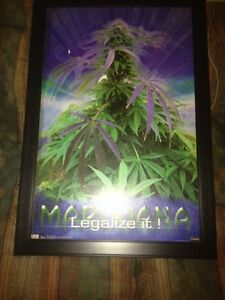 Canvas Legalize it Strathcona County Edmonton Area image 1