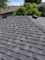 100% roof