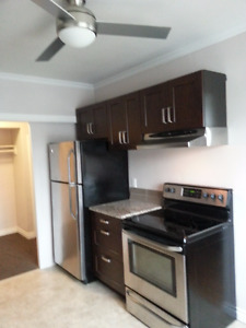 Large 5 room executive suite
