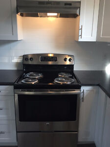 Beautiful, Fully Renovated 2 Bedroom Units- Available November 1 London Ontario image 3