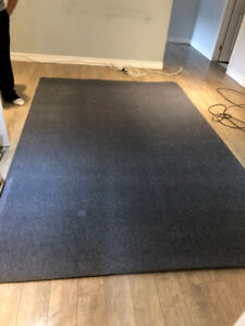 Rug 6 x 9 inch very clean no stain