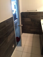 Professional Bathroom/Kitchen Wall Tile Installation