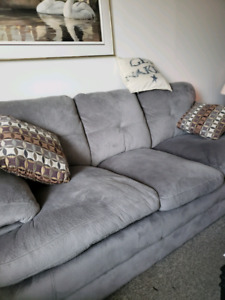 Grey Couch two years old