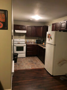 REDUCED!!! 1 Bedroom apartment in New Waterford for December 1st