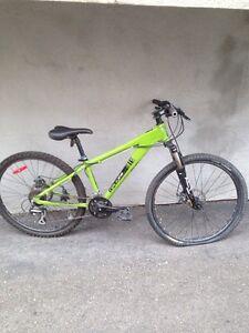 Vélo opus vert