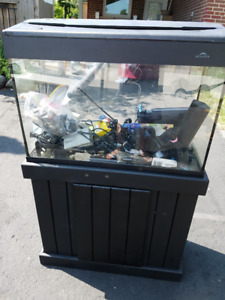 30 Gallon Aquarium with canopy with lights, stand, filters, heat
