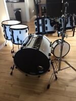 Pearl Vision 6 Pc Birch Shells