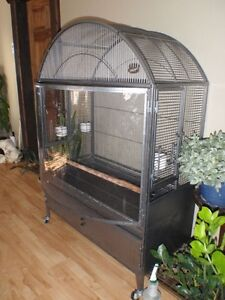 Plexiglass Bowfront Parrot Cage - Hard to Find. Price Reduced
