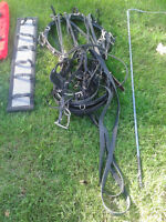 STANDARDBRED HARNESS WITH EXTRA EQUIPMENT