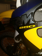 Suzuki rm 250 Moss Vale Bowral Area Preview