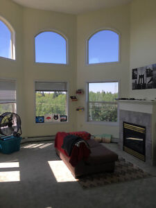 1 Bedroom in Top Floor Loft