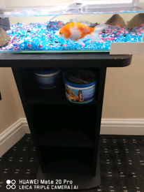 turtle tank for sale
