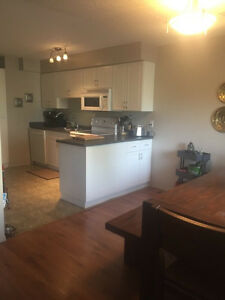 Beautiful 2 Bedroom apartment ready for August 1