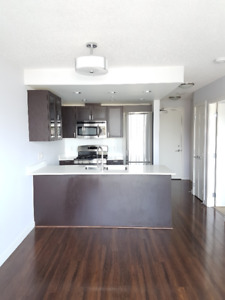 1 bedroom + den + flex condo for rent
