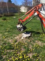 Tree and limb removal, stump grinding fully insured